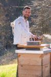 Anton Mayer jun. Mayer Honig die Honigwelt in Gleinstätten